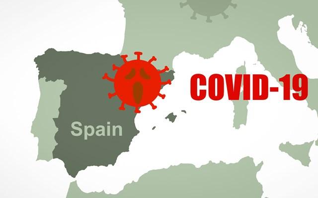 Ισπανία: Τη θανάτωση σχεδόν 100.000 μινκ που προσβλήθηκαν από κορονοϊό διέταξαν οι αρχές της Αραγονίας
