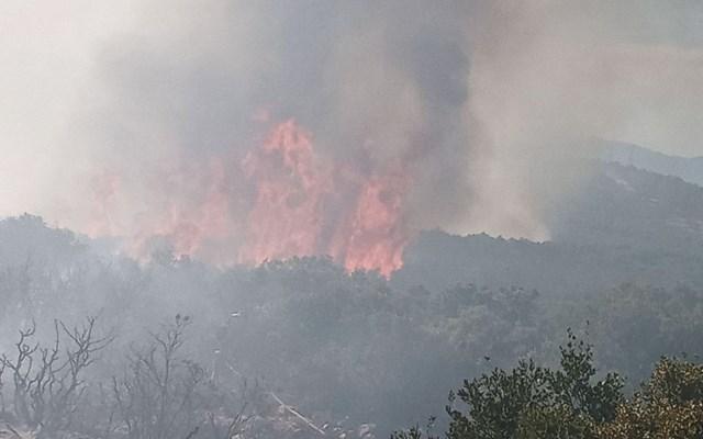 Λαμία: Πυρκαγιά με δύο μέτωπα στο Θεολόγο