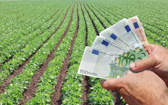 ΕΤΕ: Η Ελλάδα μπορεί να κερδίσει επιπλέον 1,2 δισ. ευρώ από την εξαγωγή τροφίμων