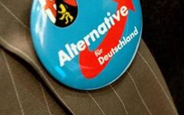 Χάναου: Το AfD στο στόχαστρο της κριτικής