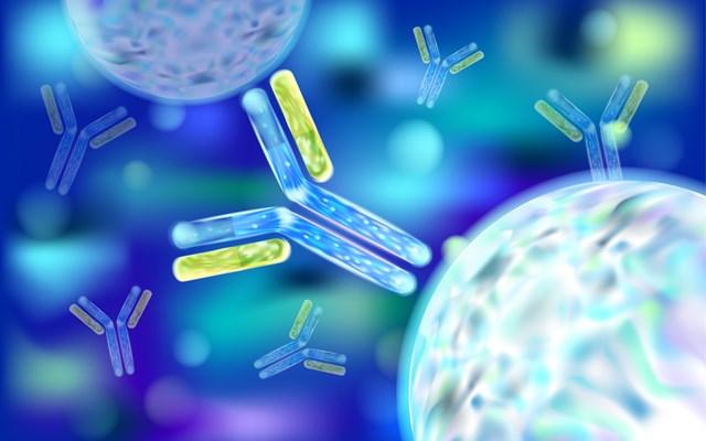 Μονοκλωνικά αντισώματα έναντι του SARS-CoV-2: Όσα γνωρίζουμε