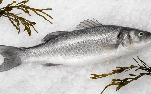 Έφοδος της ΔΙΜΕΑ σε σπίτι στο Κερατσίνι που είχε μετατραπεί σε παράνομο εργαστήριο απόψυξης αλιευμάτων