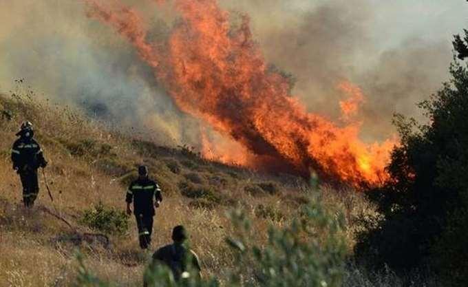 Κύπρος: Υπό πλήρη έλεγχο η πυρκαγιά στο κρατικό δάσος Πάφου