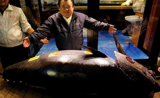Ιαπωνία: Σε τιμή ρεκόρ ύψους 2,7 εκατομμυρίων ευρώ πωλήθηκε ένας τόνος