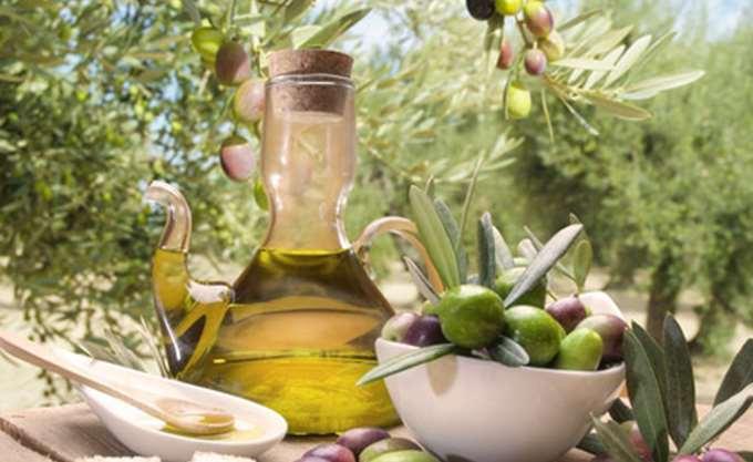 Χαλκιδική: Μείωση άνω του 50% αναμένεται στην παραγωγή πράσινης ελιάς