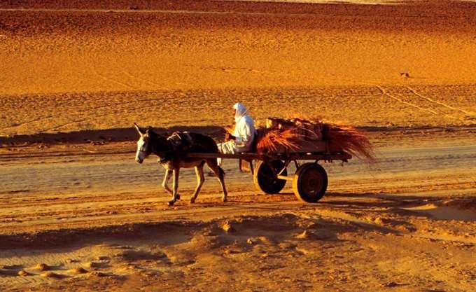 Επιστήμη: Η έρημος Σαχάρα έχει μεγαλώσει 10% από το 1920