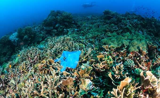 Michael Bloomberg και Ray Dalio θα διαθέσουν 185 εκατ. δολ. για την προστασία των ωκεανών