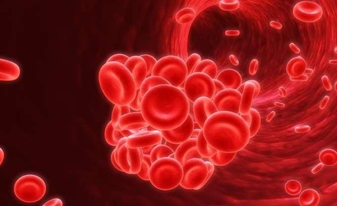 Καμπανάκι ΕΟΦ για μειωμένη διαθεσιμότητα λευκωματίνης και ανοσοσφαιρίνης