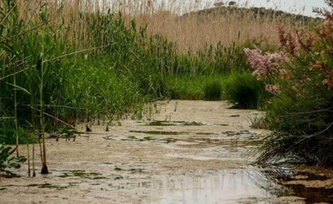 διαΝΕΟσις: Η αξιοποίηση των περιοχών Natura θα μπορούσε να δημιουργήσει 15.000 θέσεις εργασίας