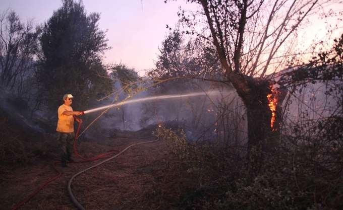 Θεσσαλονίκη: Πυρκαγιά σε έκταση στα Διαβατά