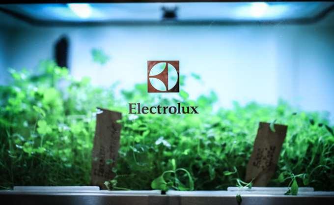 Πτώση 19% στα κέρδη της Electrolux