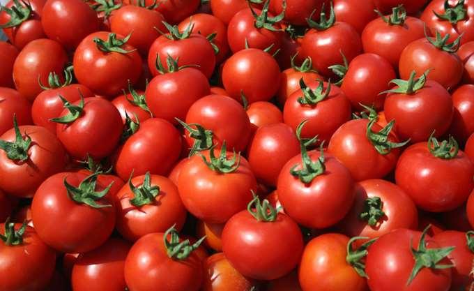 Ελλειμματική και στις ντομάτες η Ελλάδα