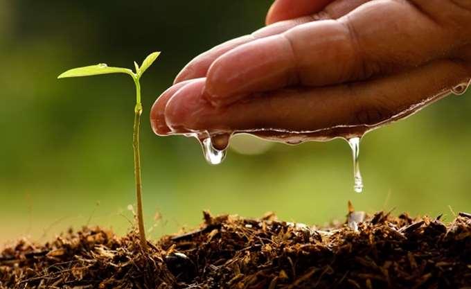Στις 20-23 Σεπτεμβρίου το 25ο Πανελλήνιο Συνέδριο για τους Νέους Αγρότες