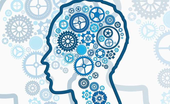 Έλληνας νευροεπιστήμονας ανακάλυψε μια άγνωστη έως τώρα περιοχή στον ανθρώπινο εγκέφαλο