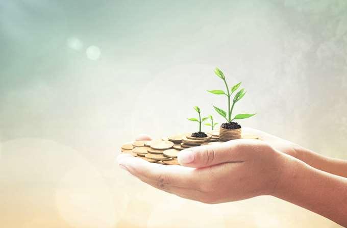 οικονομία, ανάπτυξη