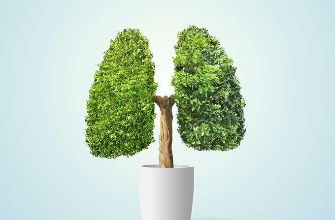 αέρας πνεύμονες 2020 πνεύμονα